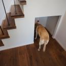 『BASC GRAY』 ― 飾る、見せるの写真 階段下・犬のトイレ