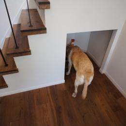 アンティーク雑貨が揃うカフェのような美しい住空間 – BASC GRAY - (階段下・犬のトイレ)
