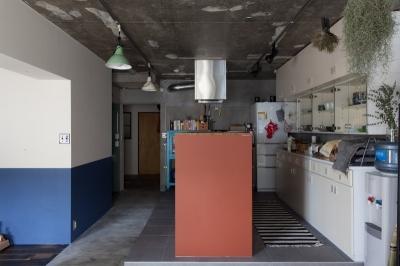 キッチン (家を育てるリノベーション 好きなものに囲まれた暮らし)