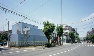 格子の家 (外観2)