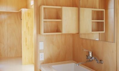 カフェ・ライブラリーの家 (洗面台1)