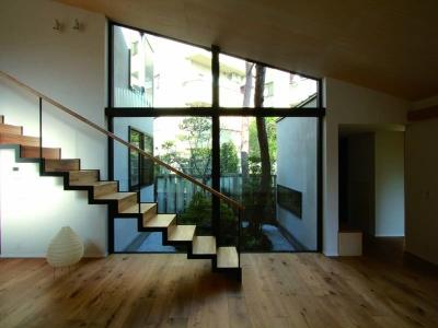 若林M邸-既存樹木を活かした3つの中庭を配する棲家- (リビング2)