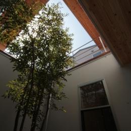 入間町A邸-中庭とデッキテラスを中心に配した二世帯住宅- (中庭見上げ)