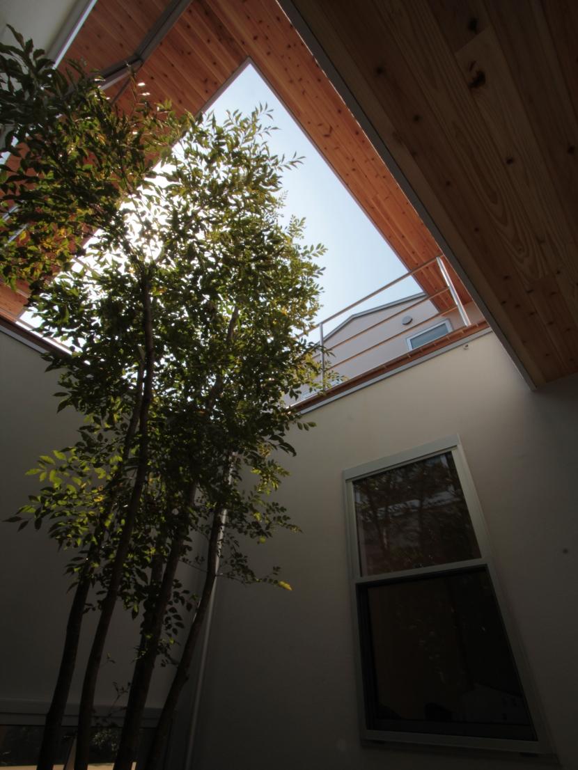 入間町A邸-中庭とデッキテラスを中心に配した二世帯住宅-の部屋 中庭見上げ