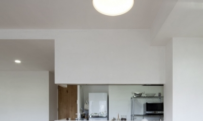 住吉川の家:神戸市のマンションリノベーション . 古材・漆喰を使ったスケルトンリフォーム (ダイニングキッチン)
