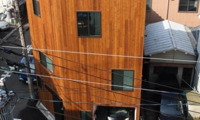 千代崎の家:大阪の狭小住宅 .2階建てスキップフロア (外観)