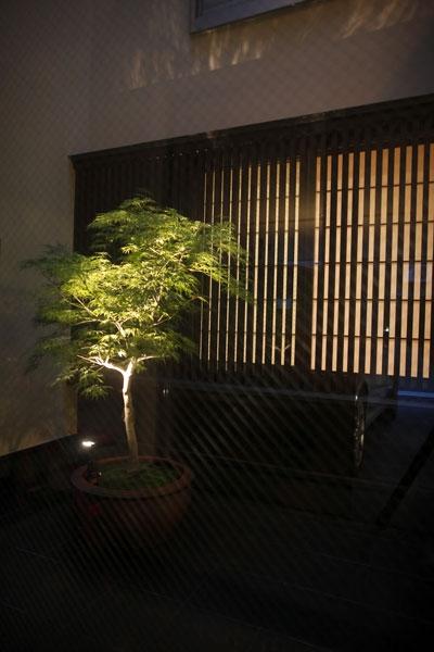 hikariniwaの部屋 光庭夜景