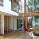 ナツミカンの木と家