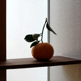 ナツミカンの木と家 (玄関)