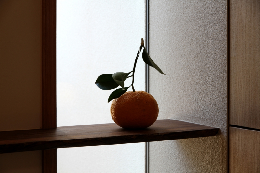 ナツミカンの木と家の写真 玄関