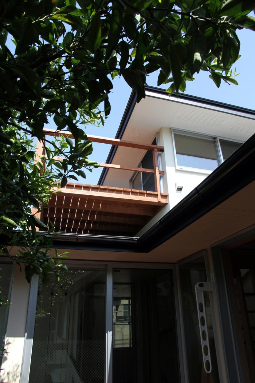 ナツミカンの木と家の写真 物見台