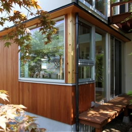 ナツミカンの木と家 (庭から)