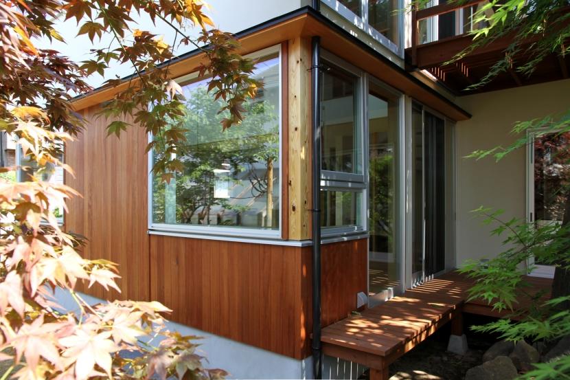 ナツミカンの木と家の写真 庭から