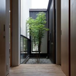 小さな中庭と大きな縁側 (中庭に面した玄関)