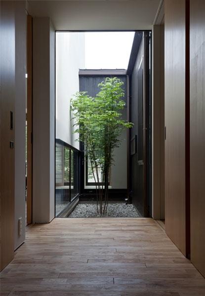 小さな中庭と大きな縁側の部屋 中庭に面した玄関