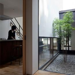 小さな中庭と大きな縁側|プライバシーを守りながら開放的に住む住宅【奈良県生駒市】 (中庭に面した玄関)