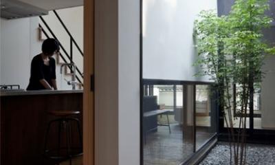 中庭に面した玄関|小さな中庭と大きな縁側|プライバシーを守りながら開放的に住む住宅【奈良県生駒市】