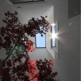 「ピッタンコの家」-坪庭