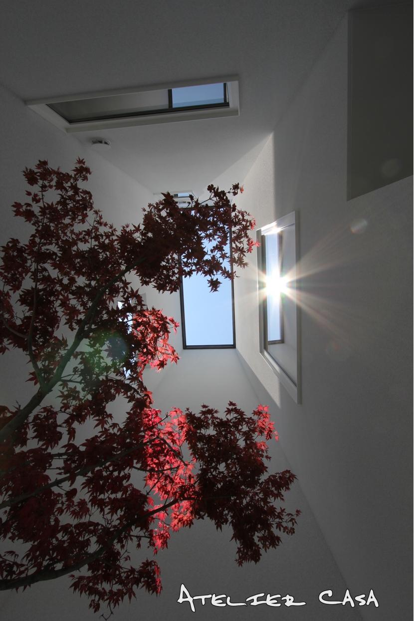 「ピッタンコの家」の部屋 坪庭