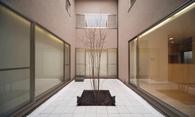 長岡京の家 (中庭)