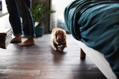 寝室 (マンションリノベーション|名古屋市千種区F邸)