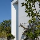 緑と風と光の家の写真 外観 4