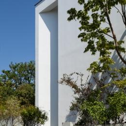 緑と風と光の家 (外観 4)