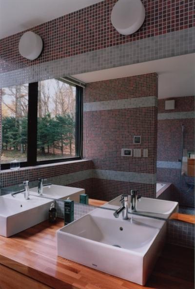 洗面、浴室 (軽井沢の家5)