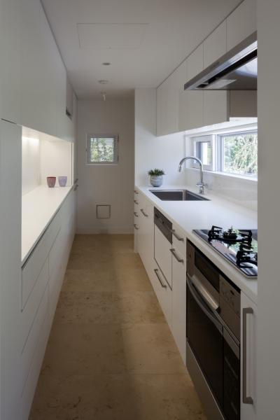 緑と風と光の家 (キッチン 2)