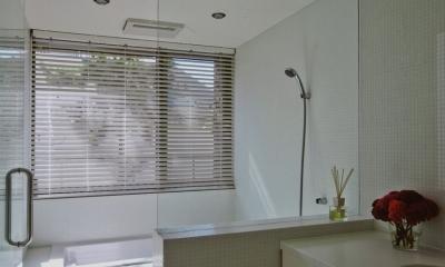 広尾の家 (浴室)