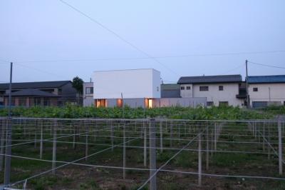 T-a2 ブドウ畑に浮かぶ白い箱型住宅 (デザイン住宅外観いろいろ)