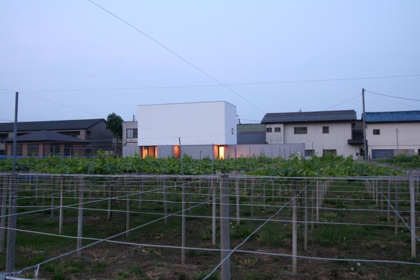 デザイン住宅外観いろいろの部屋 T-a2 ブドウ畑に浮かぶ白い箱型住宅