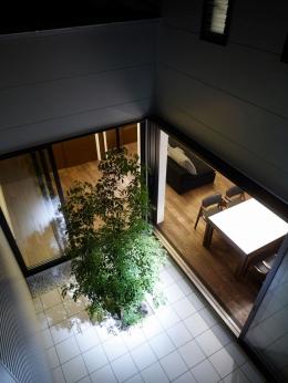 niwa Terrace (中庭)