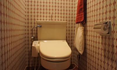 『SAKU』 ― カラー・リノベーション (トイレ)