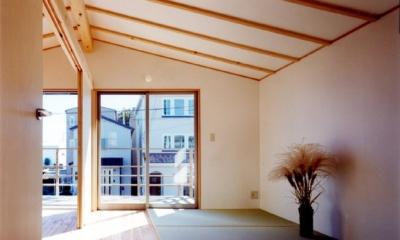 コンパクトハウス/Saさんの家 (空間を提供して、部屋さえ自由に設定)