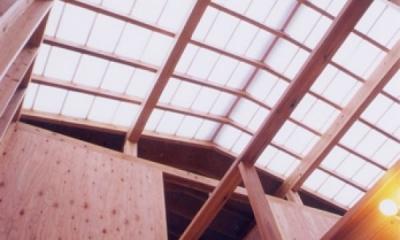 生成りのビルトインガレージハウス (光を満たしてゆく光の屋根天井、光の吹抜け空間)