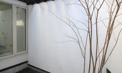 インナーバルコニーのある家 OUCHI-25 (浴室の光庭)