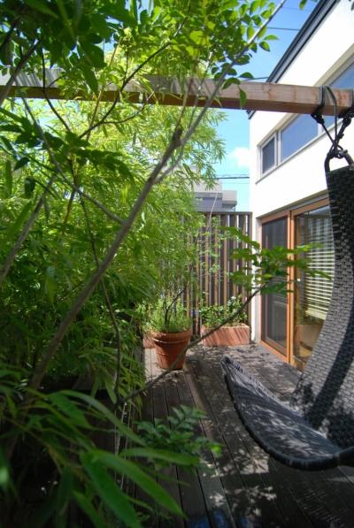 中空の中庭 (都市型住宅-自然を取り込む)