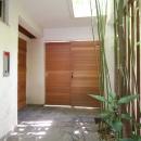 新井敏洋・眞理の住宅事例「都市型住宅-自然を取り込む」