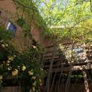 小さな家~緑の中で暮らす木のアトリエ付住宅~の写真 敷地のオープンスペースを有効に使う