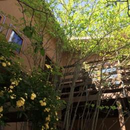 小さな家~緑の中で暮らす木のアトリエ付住宅~