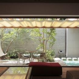 深沢S邸-空間が連続し家族が繋がる立体回遊プラン- (中庭)