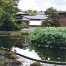 池にたたずむ外観