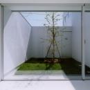 子供室より緑の中庭