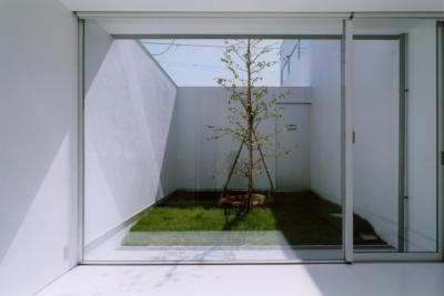 藤沢の住宅 (子供室より緑の中庭)