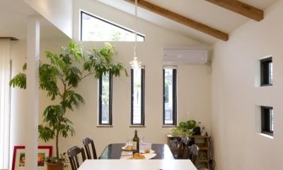 T邸・オリジナルキッチンと家具で光と風が遊ぶ憧れのリビング (キッチン4)