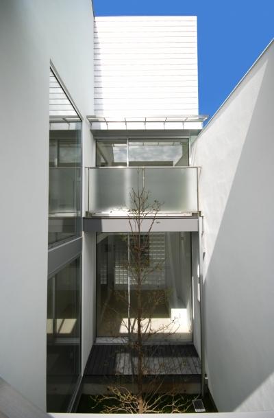 千歳台の二世帯住宅 (世帯を繋ぐ中庭)