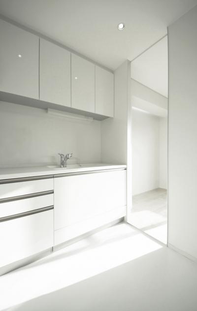 Room 402 - マンションリノベーション (CSM - キッチン3)