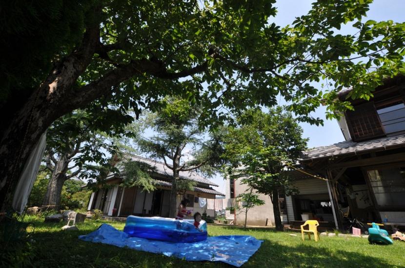 建築士の家の写真 庭
