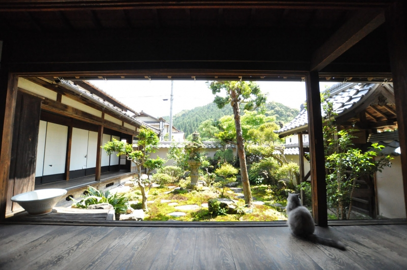 建築士の家の部屋 坪庭(南から)